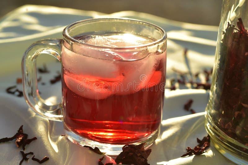 Naturligt rött iste som gjordes av hibiskusblommakronblad, kallade Fleur de Jamaica i Mexico royaltyfri foto