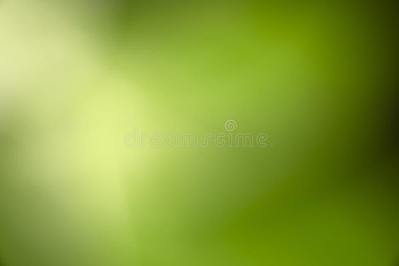 Naturligt suddigt ljus för grön bokeh arkivfoton