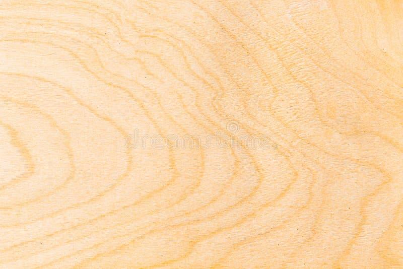 naturligt texturträ för closeup royaltyfria bilder