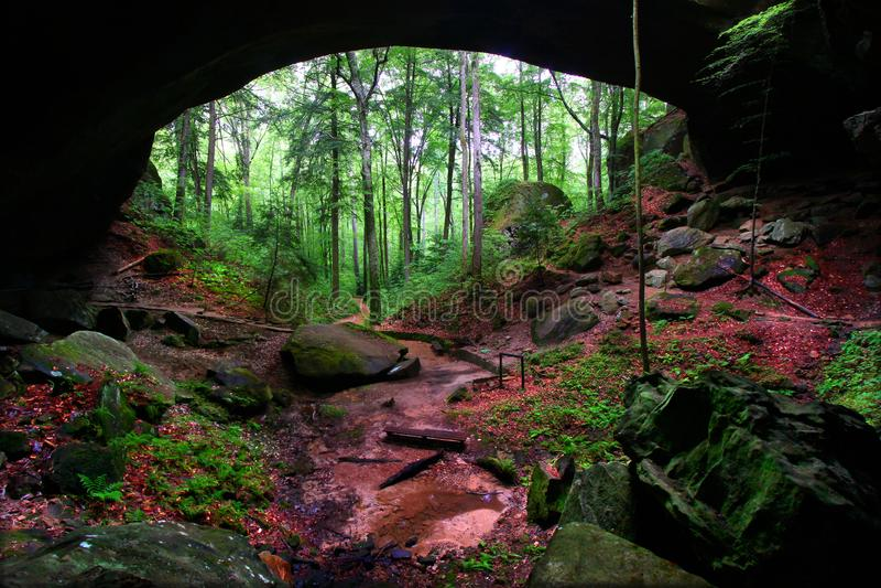 Naturligt vagga bron Alabama arkivfoton