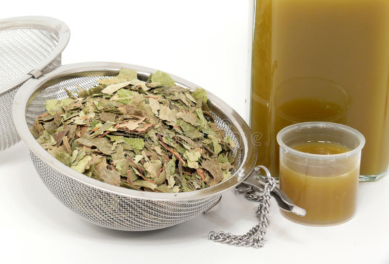Download Naturopathy, Dried Birch Leaves Stock Photo - Image: 18390596