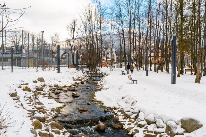 Naturpark in der Stadt bedeckt mit Schnee, durch den Flüsse eines Gebirgsstromes, auf das Ufer dort Steine sind- Sichtbare Leute stockbilder