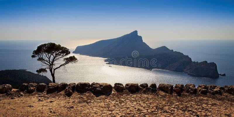 Naturpark Sa Dragonera, Tageszeit, Sa-Trapakloster, Ansicht von Mittelmeer, Bäume, Betriebsnatur im Vordergrund, sonniger Tag, stockfotografie