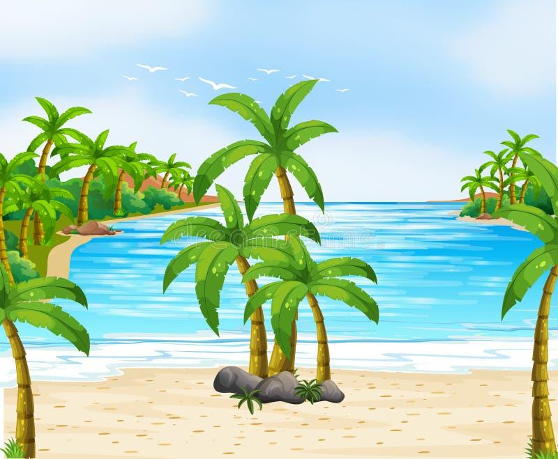 Download Naturplats Med Kokospalmer På Stranden Vektor Illustrationer - Illustration av lawn, lopp: 78732380