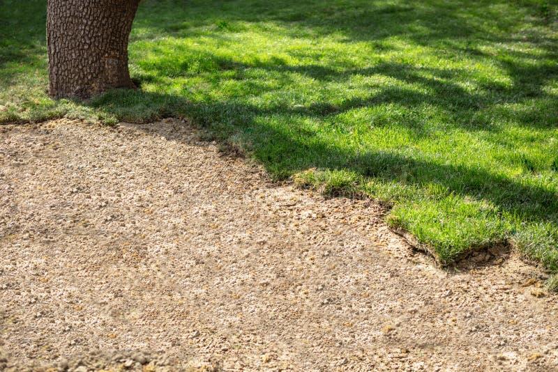 Naturrasen-Rasen, die schönes Rasen-Feld schaffen lizenzfreie stockbilder
