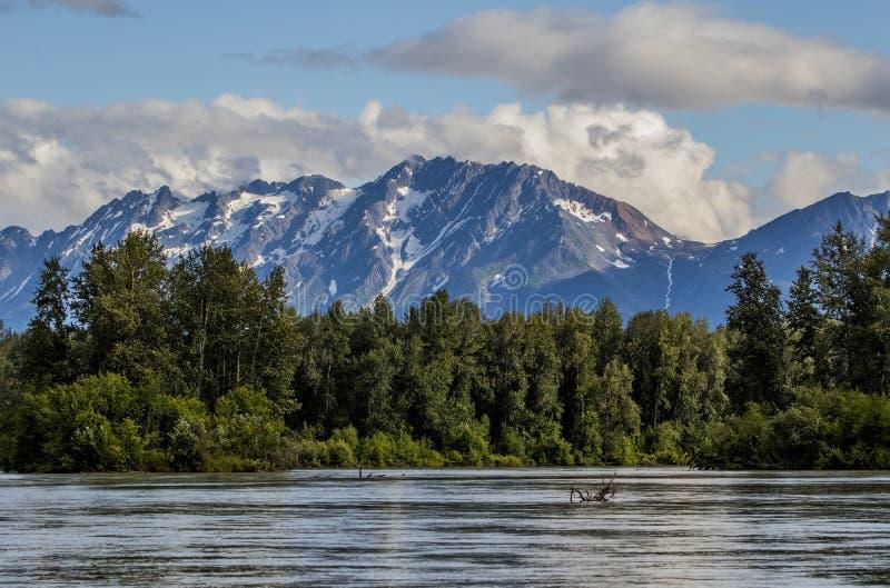 Naturschönheit nahe Haines, Alaska lizenzfreies stockfoto