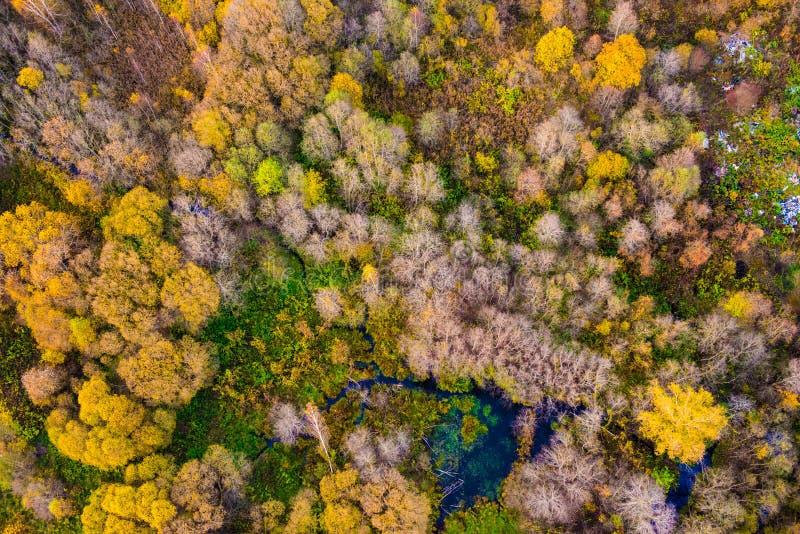 Naturskönhet i Litauen arkivfoto