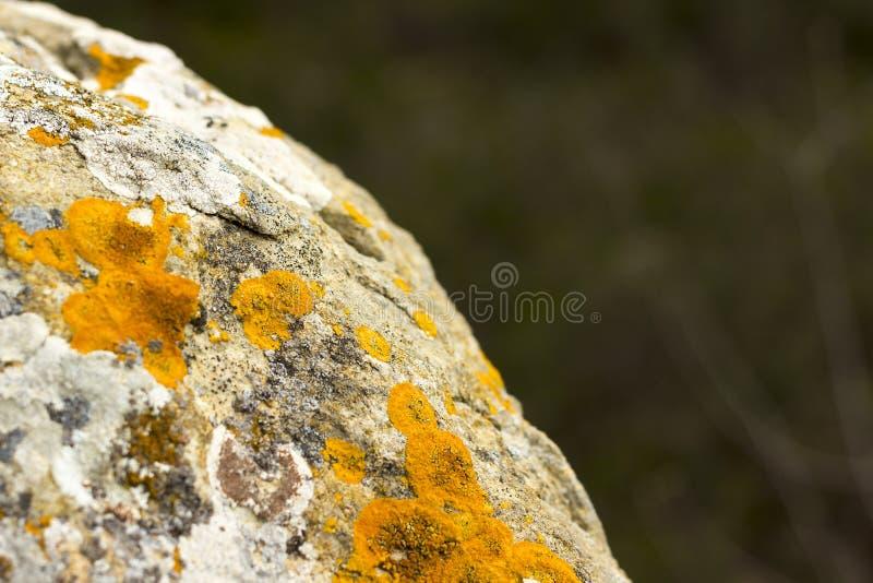 Naturstein bedeckt mit Flechtenbeschaffenheit lizenzfreies stockfoto