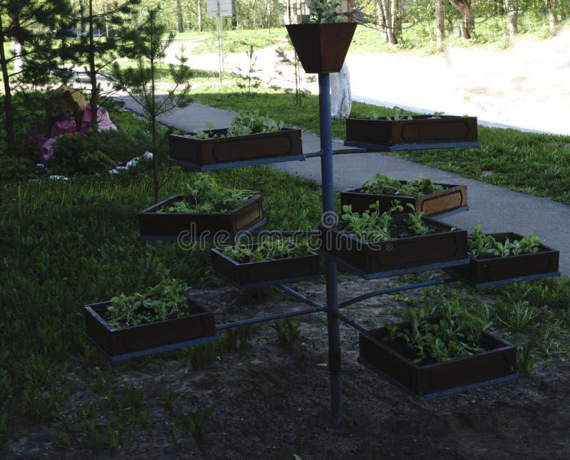 Naturstein, der im Hausgarten landschaftlich gestaltet stockfoto