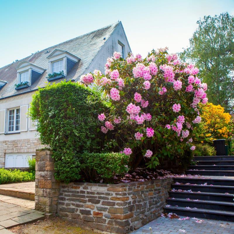 Naturstein, der im Hausgarten mit Schritten landschaftlich gestaltet lizenzfreie stockfotos