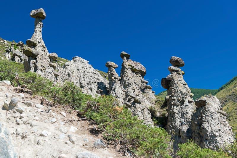 Natursteinbildungen im Chulyshman-Tal ` entsteinen Pilze ` an einem sonnigen Tag, Ulagansky-Bezirk, Altai-Republik, Russland stockfoto