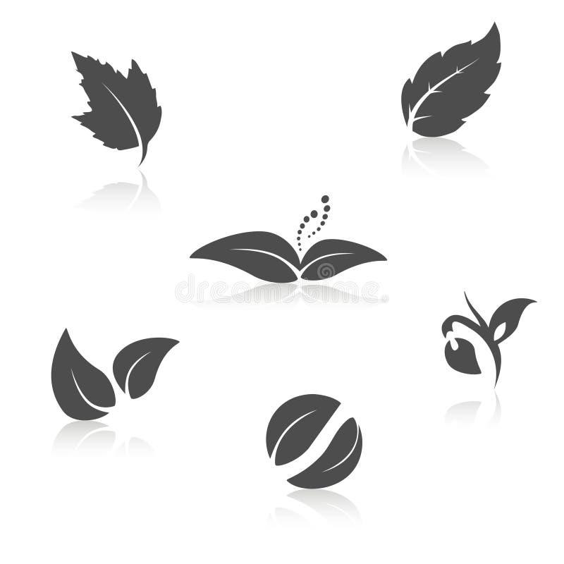 Natursymbole - Blattikone, Schattenbild mit Schatten lizenzfreie abbildung