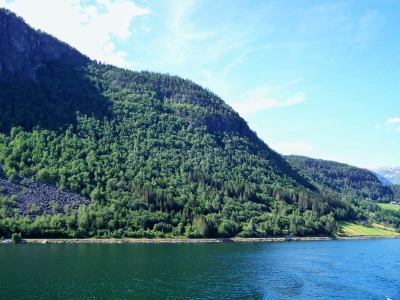 Naturwanderung im Wald, das Wasser des Fjords, sonniger Tageshintergrund lizenzfreie stockfotos