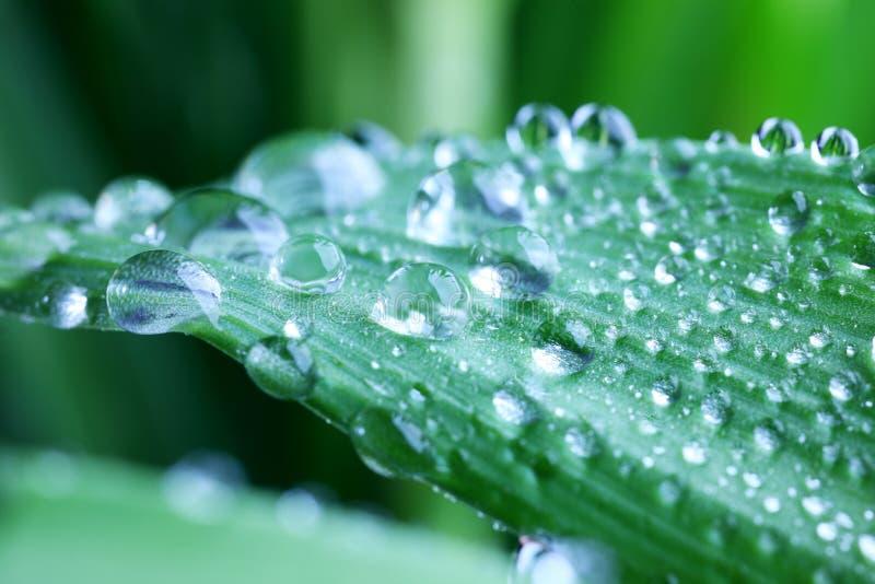 Naturwasser stockfoto