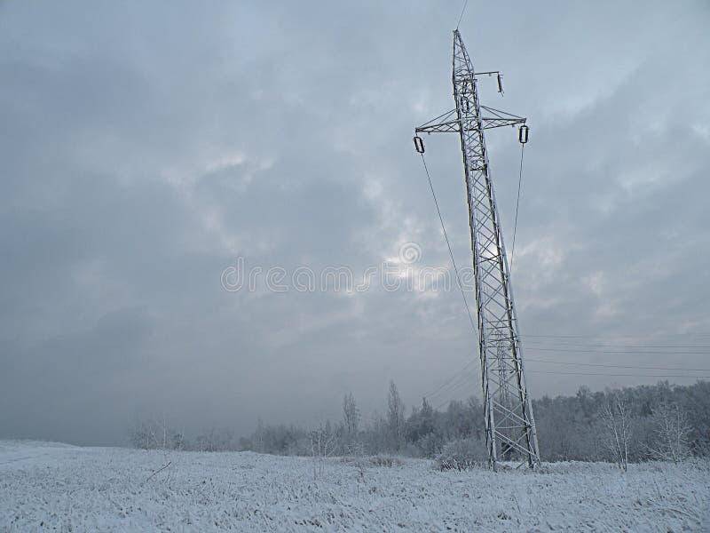Naturwinter-Panoramawald der gefrorenen Energie-Stange trauriger lizenzfreie stockfotos