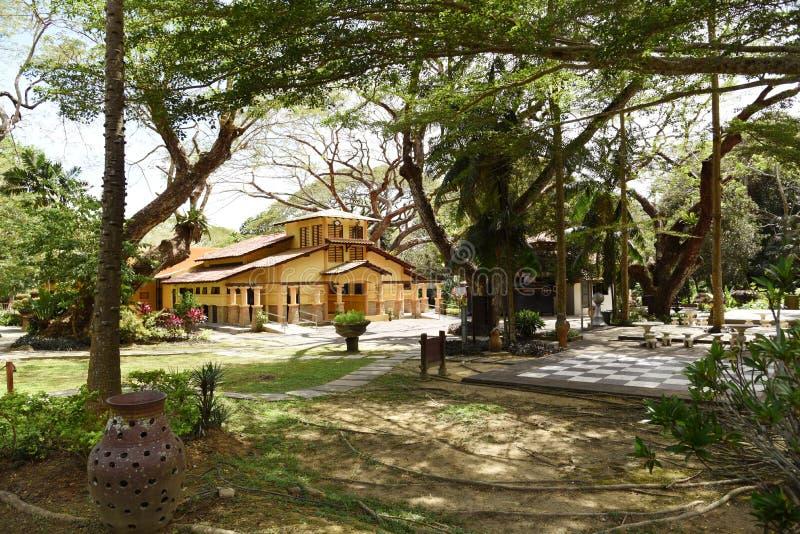 Natury ścieżka z ogródem obrazy royalty free