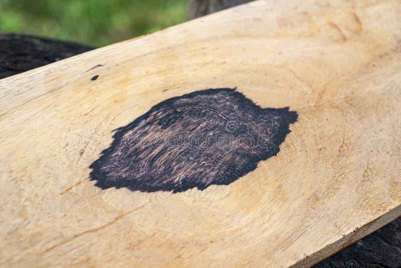 Natury Burma czerni egzotyczny drewno obraz stock
