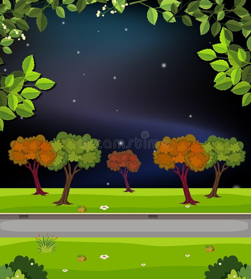 Natury droga przy nocą royalty ilustracja