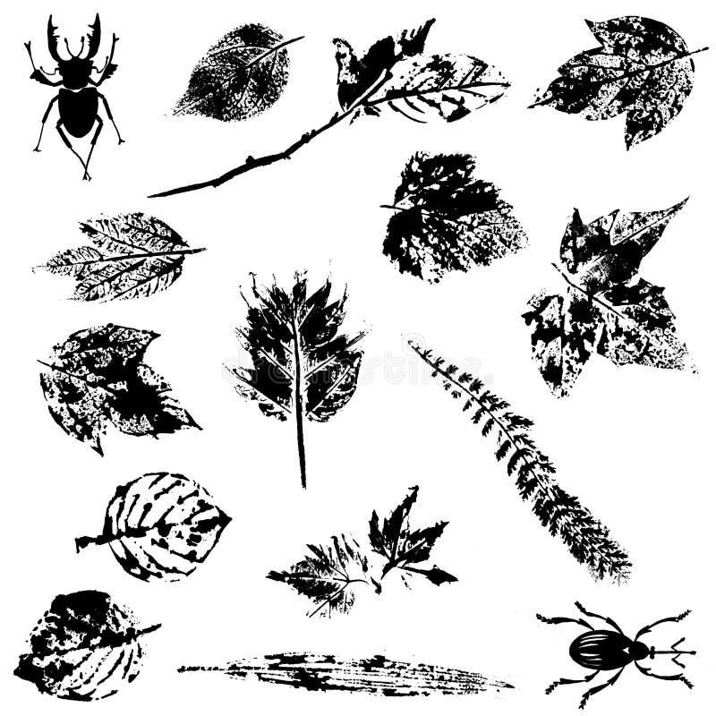 Natury Grunge elementy ilustracja wektor