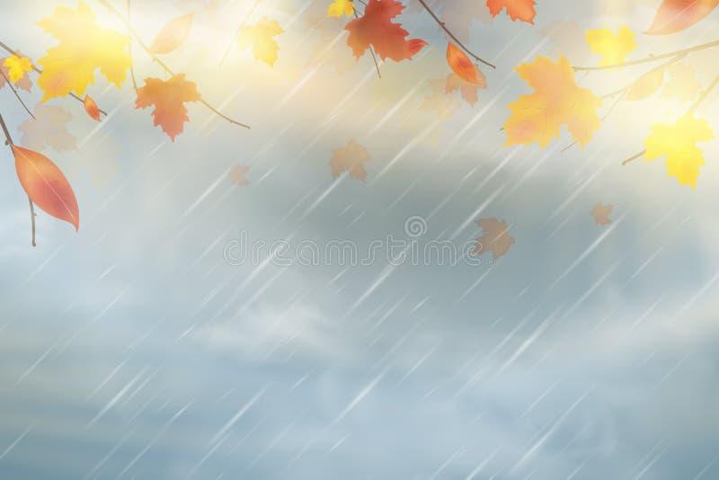 Natury jesieni tło z spada czerwienią, kolor żółty, pomarańcze, brown liście klonowi na niebie Jesień sezonu dżdżysty pogodowy pr royalty ilustracja