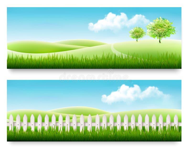 Natury lata sztandary z zieloną trawą i niebieskim niebem royalty ilustracja