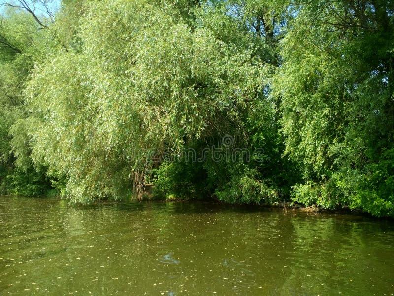 natury piękna rzeka zdjęcia stock
