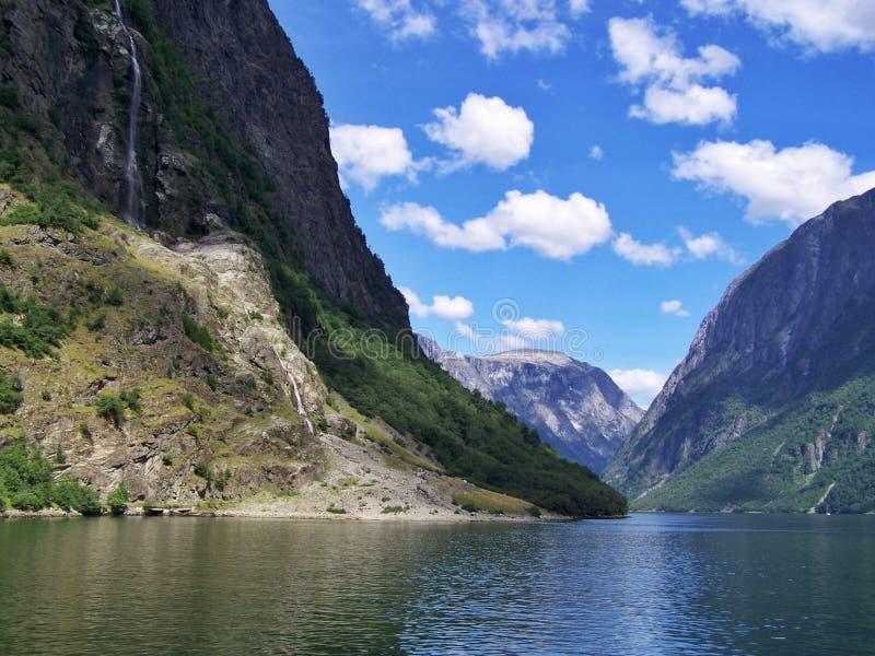 Natury podwyżka w drewnach woda fjord, słonecznego dnia tło obraz royalty free