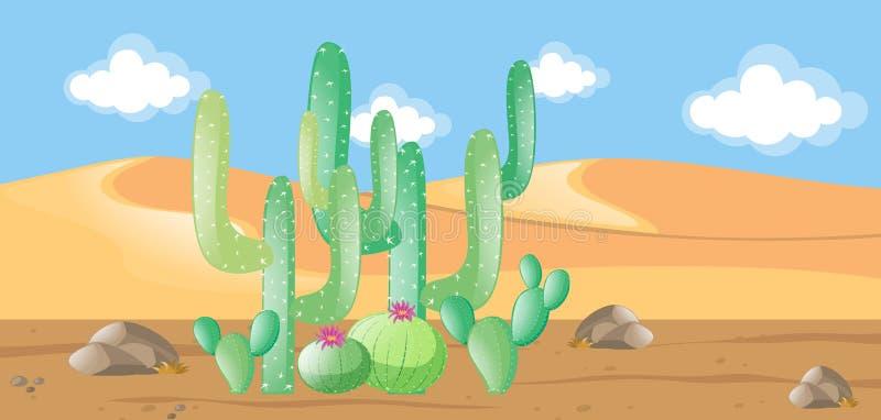 Natury scena z kaktusem w pustyni ilustracja wektor