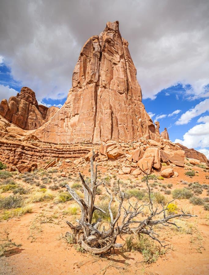 Natury tło, łuku park narodowy obrazy royalty free