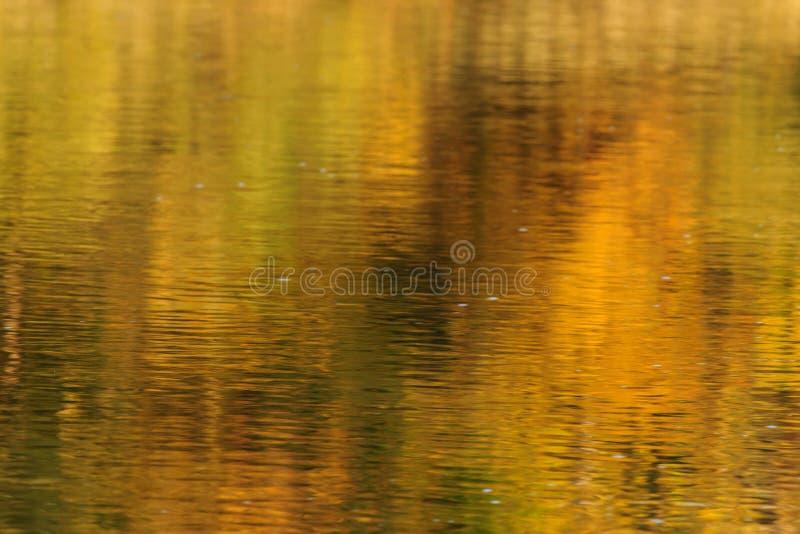 Natury tło - odbicie na wodzie obrazy royalty free