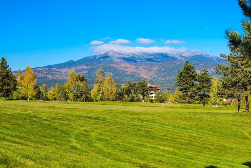 Natury tło z kolorową zielenią, żółtymi jesieni drzewami i trawy polem, zdjęcia royalty free