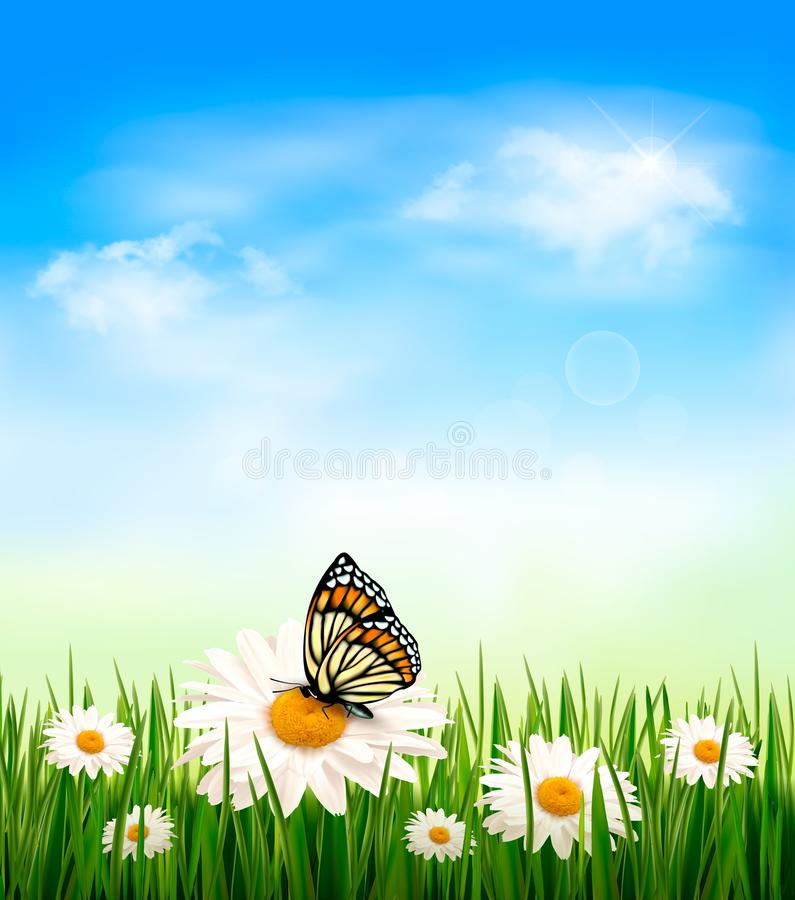 Natury tło z zielonej trawy i kwiatów dowcipem ilustracja wektor