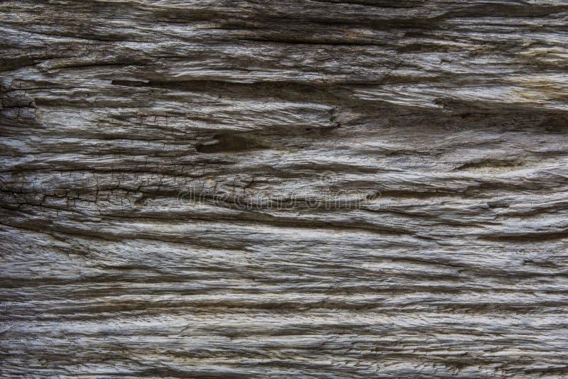 Natury tekstury drewniany tło zdjęcia royalty free