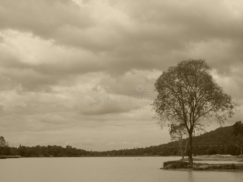 Natury tworzenie fotografia royalty free