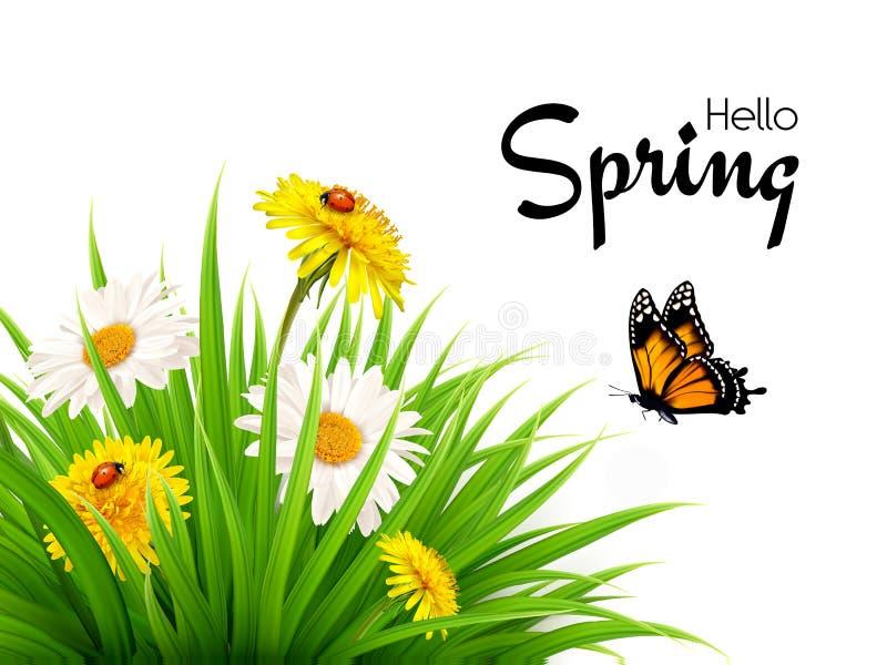 Natury wiosny tło z trawą, kwiatami i motylami, ilustracji