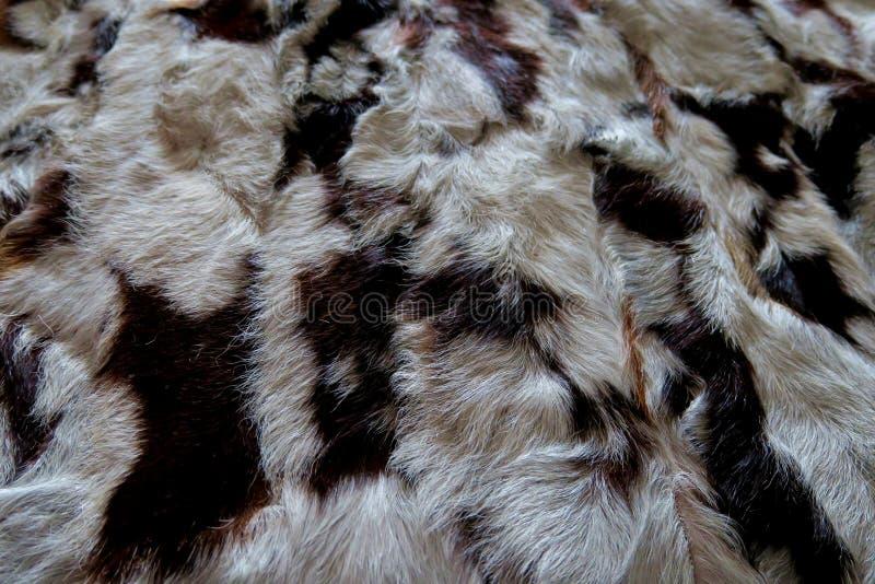 Natuurlijk bont grijs-wit met zwarte strepen, mooie achtergrond stock foto