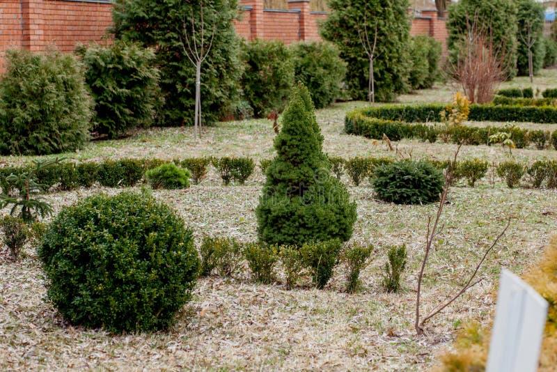 Natuurlijk het modelleren panorama in huistuin Mooie mening van gemodelleerde tuin in binnenplaats Landschap van het modelleren g stock foto