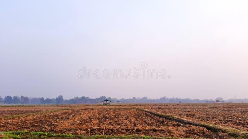 Natuurlijk landschap elke dag Rijstgrond die begint te drogen nadat de landbouwer zijn oogst heeft beëindigd Afbeeldingen van roy stock afbeeldingen