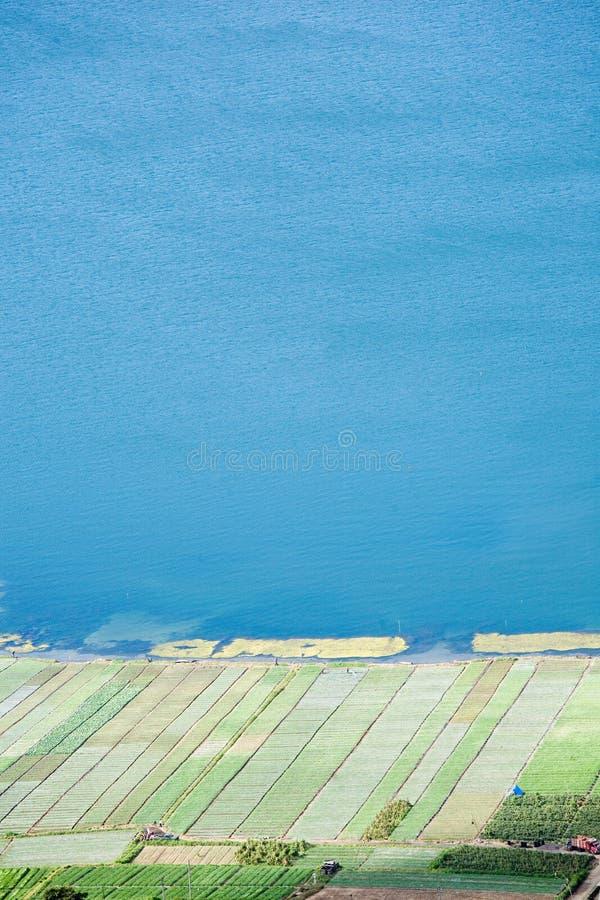 Natuurlijk Landschap (Gebied & Overzees stock afbeelding