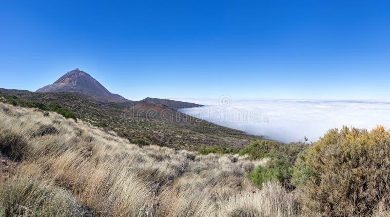Natuurlijk landschap in het nationale park Tenerife stock afbeelding
