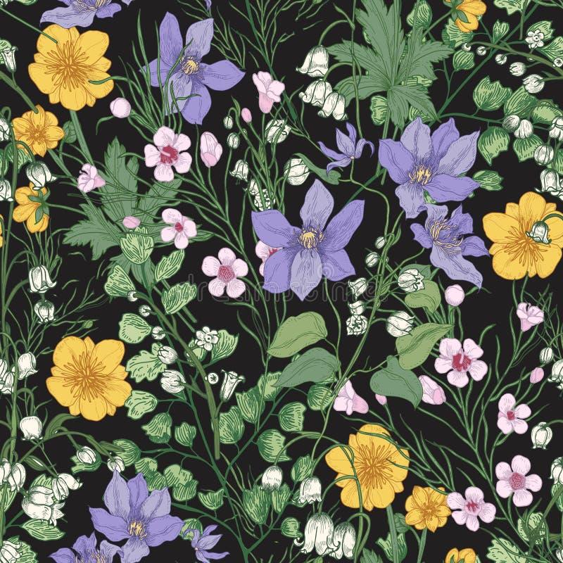 Natuurlijk naadloos patroon met schitterende tedere bloeiende bloemen en bloeiende kruidachtige installaties op zwarte achtergron royalty-vrije illustratie