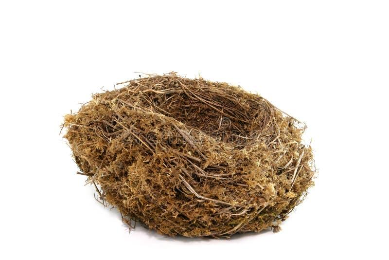 Natuurlijk Nest royalty-vrije stock afbeeldingen