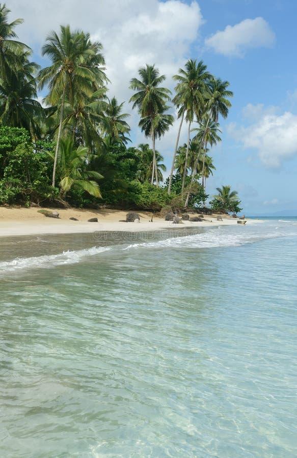 Natuurlijk strand, Dominicaanse Republiek stock foto