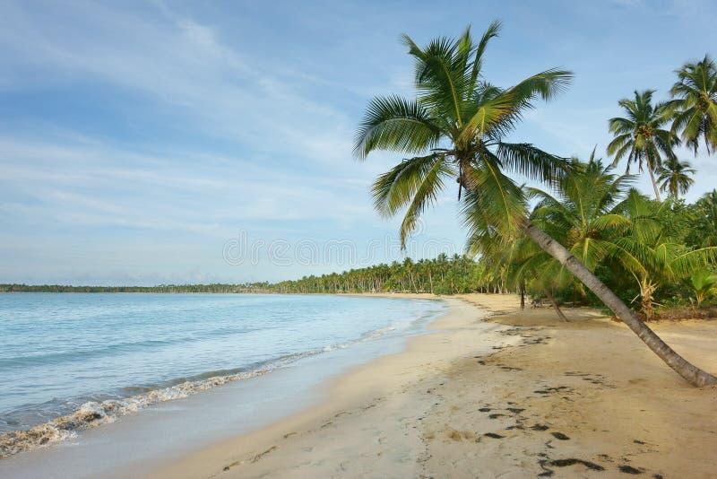 Natuurlijk strand, Dominicaanse Republiek stock afbeeldingen