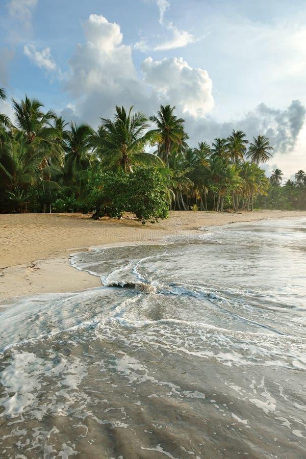 Natuurlijk strand, Dominicaanse Republiek royalty-vrije stock afbeeldingen