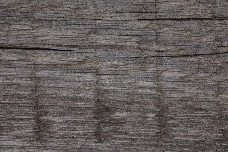 Natuurlijk stuk van hout, achtergrond royalty-vrije stock afbeeldingen