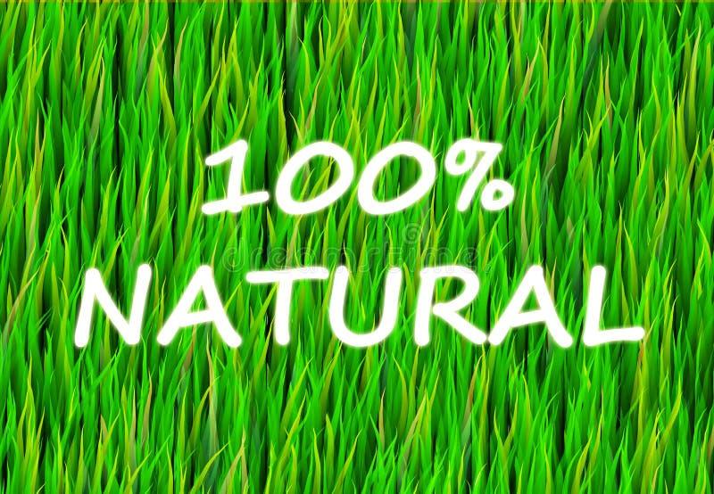 Natuurlijke 100% royalty-vrije illustratie