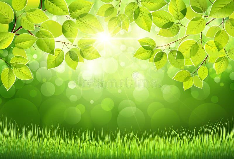 Natuurlijke achtergrond met bladeren vector illustratie