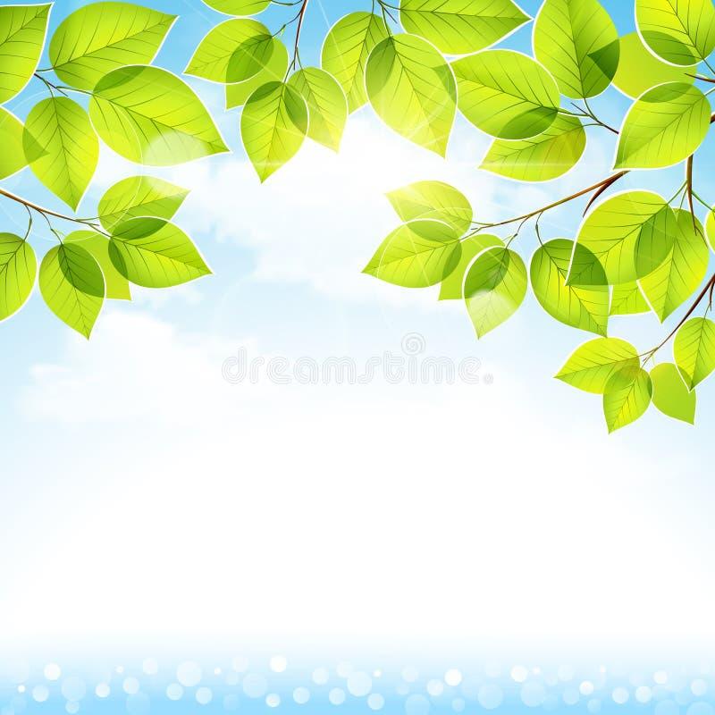 Natuurlijke achtergrond met bladeren stock illustratie