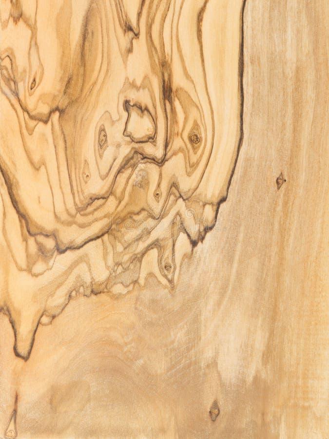 Natuurlijke achtergrond van olijfboomraad stock fotografie